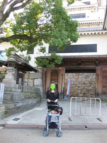 0720091017oshiro.jpg
