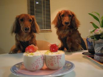 cake303.jpg