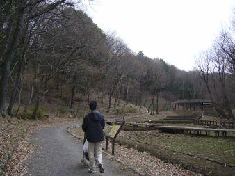 080301_shikinomori05.jpg