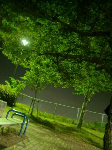 10月21日夜の竜王公園