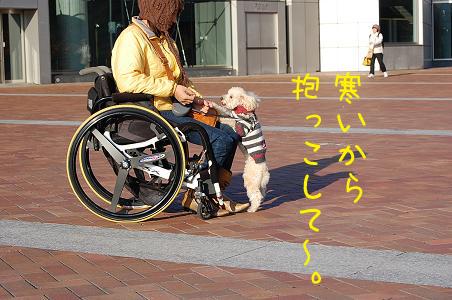 20071113231959.jpg