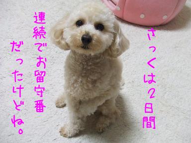 20071122103609.jpg