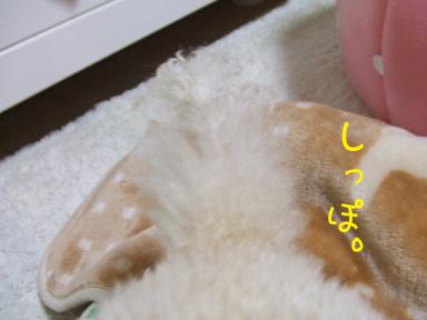 20071205222618.jpg