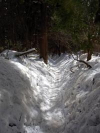 すこし外れれば結構な積雪