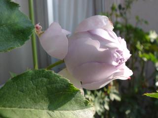 200911073.jpg