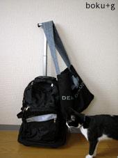 llbeanbookpack
