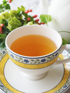 ネパール ジュンチャバリ茶園 銀の芽紅茶店