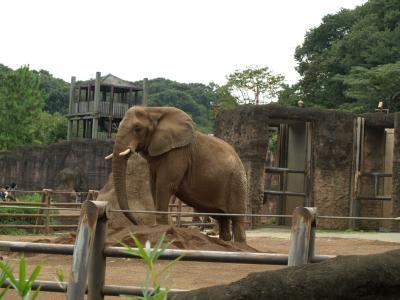 多摩動物公園 143