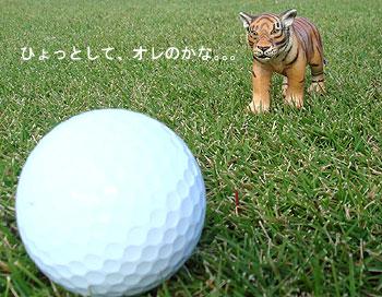 ゴルフ年賀状 2010!