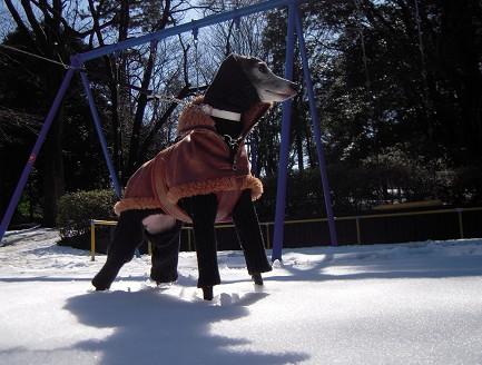 雪の中で仁王立ち。