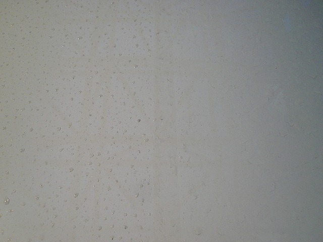 P1220055-441.jpg
