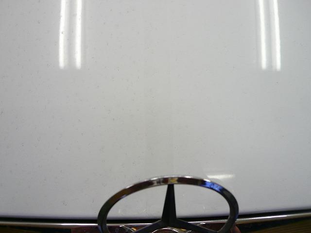 P1220080-441.jpg