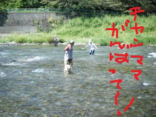 2009_0906ピクチャ0081こは