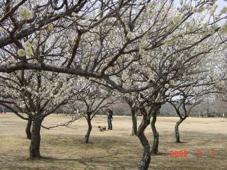 2008_3_1.jpg