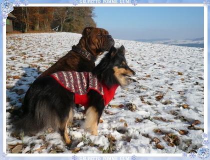 雪景色を眺める