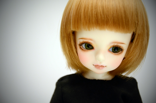 110112other8.jpg
