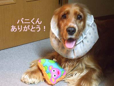 Thank youなの!!