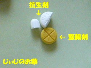 2009_0917med0002b.jpg