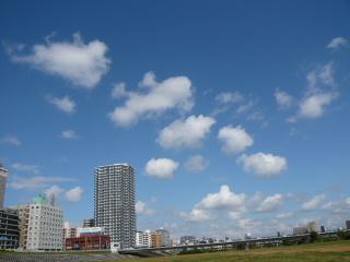 2009_0919hare0046.jpg