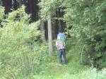 森深くまで歩きます。
