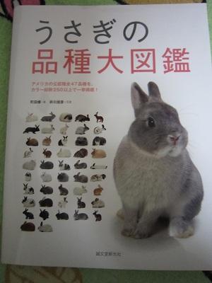 うさぎの品種大図鑑