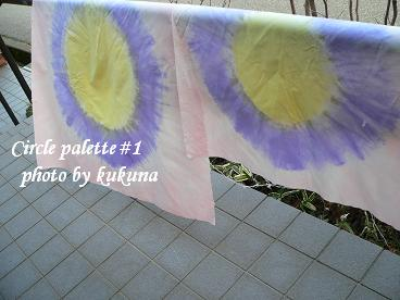 Circle palette1