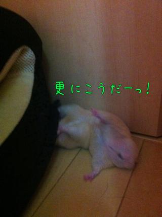 iphone_20110707214634.jpg