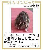 20061206004237.jpg