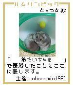 20061206004315.jpg