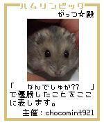 20061206004325.jpg