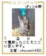 20061206004333.jpg