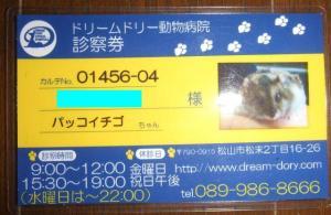 2007_05010068.jpg