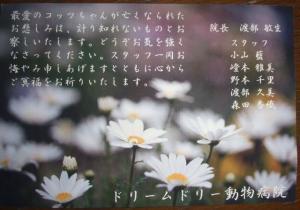 2007_05180005.jpg