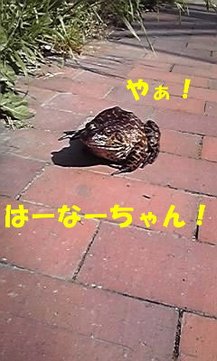 11-05-18_004.jpg
