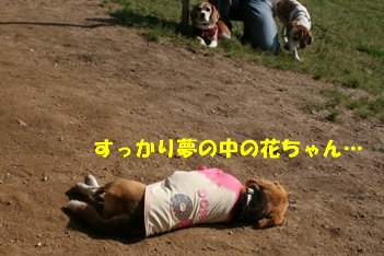12 IMG_8872