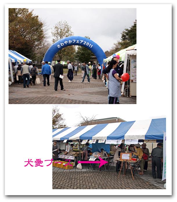 10232_20111027021702.jpg