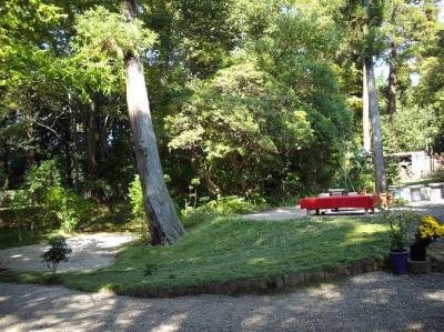 茶屋の庭1