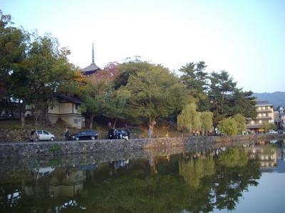 猿沢の池2
