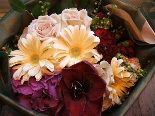 アマリリスと紫陽花のアレンジ