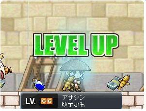 yuzu66lv.jpg