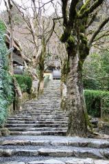 寂光院への石段