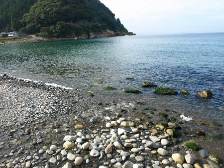 綺麗な海♪