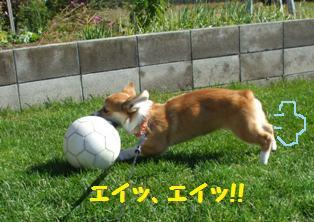 Rin071018-4.jpg