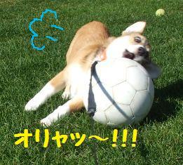 Rin071018-5.jpg