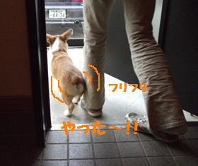 Rin071020-2.jpg