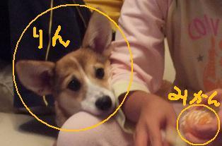 Rin071023-9.jpg