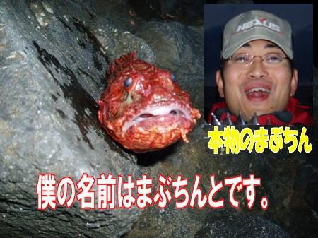 mabuchitsukasa