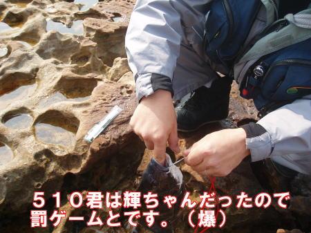 ガニ瀬06