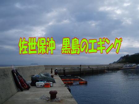 黒島イカ00