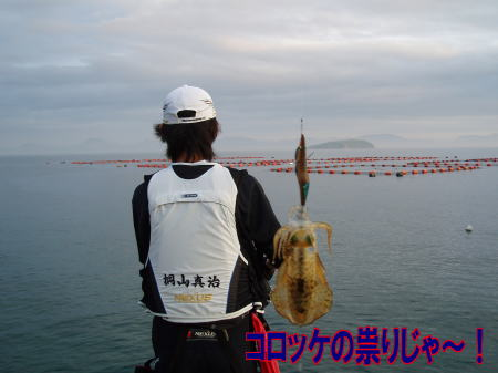 黒島イカ04